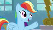 S06E07 Rainbow wczuwa się w rolę Applejack.png