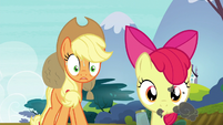 """Applejack """"what in tarnation are you doin'?!"""" S5E4"""