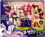 Cutie Mark Crusaders Equestria Girls Wild Rainbow doll packaging