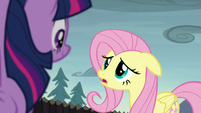 """Fluttershy """"if we solved the problem already"""" S5E23"""