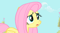 Fluttershy 'maybe Spike feels threatened' S1E24