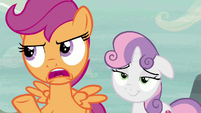 """Scootaloo """"Feather Bangs may have good timing"""" S7E8"""
