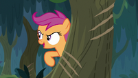 Scootaloo pointing at claw marks S9E12