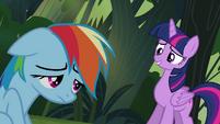 """Twilight and Rainbow """"an honest mistake"""" S4E04"""