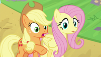 "Applejack ""they're tryin' to say somethin'"" S8E23"