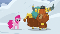 Pinkie Pie -completely bury all your homes- S7E11