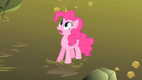 Pinkie Pie looks at the Hydra coming out of the swamp S1E15