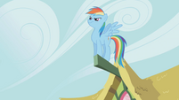 Rainbow Dash standing on a part of a ceiling S1E3
