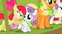 """Apple Bloom """"ONE! DAY! Good Luck!"""" S2E5"""