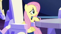 """Fluttershy """"shouldn't we wait for the invitation?"""" S6E1"""