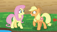 Fluttershy and AJ smiling with pride S8E23