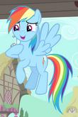 Rainbow Dash ID 2.png