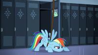Rainbow Dash is in S5E5