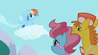 Rainbow Dash to the Wonderbolts S2E13