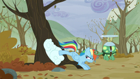 Rainbow pushes the cloud into the tree with her back legs S5E5