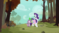 """Rarity """"the way to the phoenix nests"""" S8E11"""