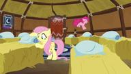 S07E11 Fluttershy i Pinkie przygotowują łóżka dla jaków