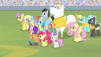 The Ponyville teams in the stadium S4E24