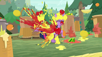 Twilight and Spike assaulted with fruit S9E5