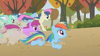 2 versions of Rainbow Dash S01E13
