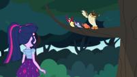 Birds singing to Twilight Sparkle CYOE4a