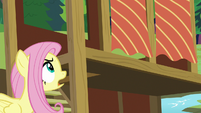 Fluttershy -these curtains blocking the light- S7E5
