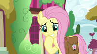 Fluttershy embarrassed by her burp S9E18