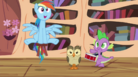 Rainbow, Owlowiscious and Spike still playing around S4E21