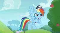 "Rainbow Dash ""everypony on that field"" S9E15"