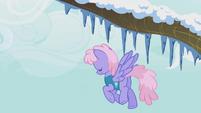 Rainbowshine is tired S1E11