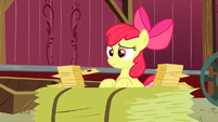 Apple Bloom telling Granny Smith all her RSVPs S3E8