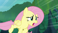 """Fluttershy """"it must be in horrible agony"""" S8E18"""