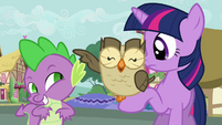 Owlowiscious swats Spike with his wing S03E11