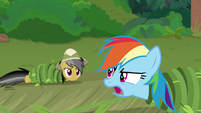 """Rainbow """"just here to rescue Fluttershy!"""" S9E21"""
