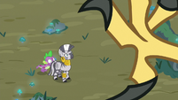 Roc attacks Spike and Zecora with its claws S8E11