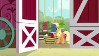 AJ bucketing apples outside the barn S9E10