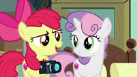 "Apple Bloom ""we're a set of three"" S9E12"