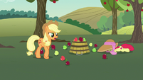 "Applejack ""you're doublin' our workload here!"" S7E9"