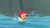 Applejack floating down the stream S8E9