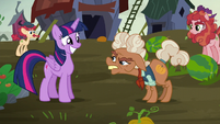 Ma Hooffield agrees to a ceasefire S5E23