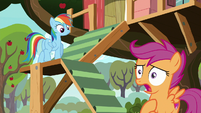"""Scootaloo """"clearing up what I should do"""" S8E20"""