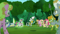 Zecora turns her eyes to the other ponies S5E26