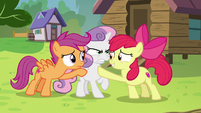 Apple Bloom and Scootaloo hold Sweetie back S7E21