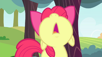 Apple Bloom looks up S4E17