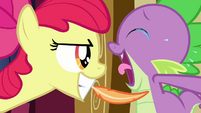 Apple Bloom tickles Spike with a feather S03E11
