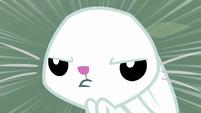 Bunny Fluttershy staring harder S9E18