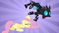 Fluttershy attack S02E26