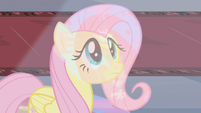 Fluttershy looking up at stained glass S2E01