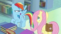 "Rainbow Dash ""now it all makes sense!"" S9E21"