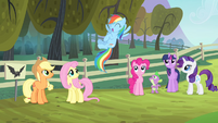 Rainbow Dash super excited S4E07